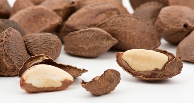 Бразильские орехи: польза и вред