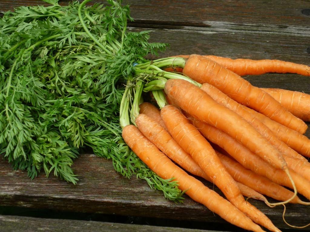 Морковь для повышения гемоглобина народными средствами