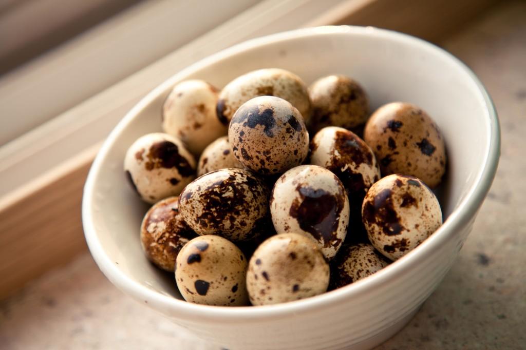 Перепелиные яйца для лечения кисты печени народными средствами