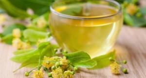 Липовый мед: польза и вред