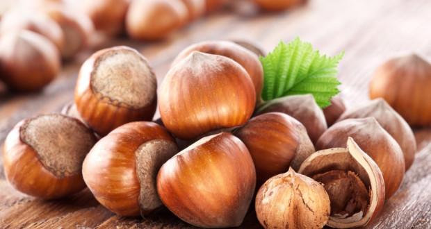 Лесной орех: польза и вред