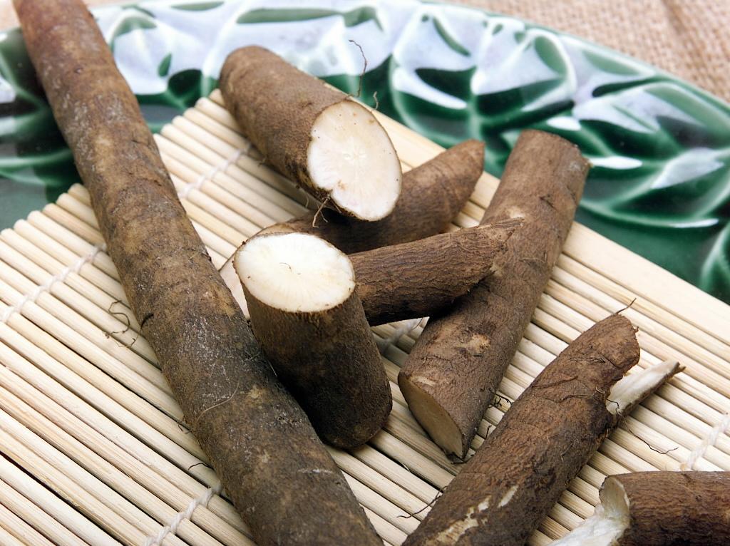 Отвар из корней репейника – великолепное средство от перхоти